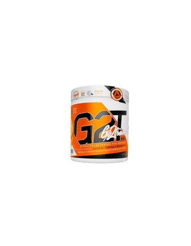 G2T GO TO TRAIN PRO LIMITED