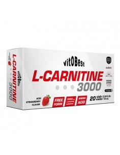 L-Carnitine 3000 - 20 Viales 10Ml