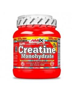 Creatine Monohydrate 500+250g Free